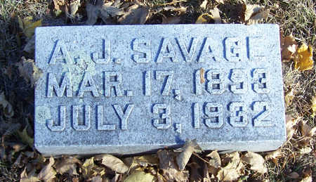 SAVAGE, ANDREW JACKSON - Shelby County, Iowa | ANDREW JACKSON SAVAGE