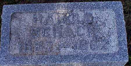 SCHACK, HAROLD - Shelby County, Iowa | HAROLD SCHACK
