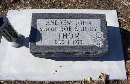 THOM, ANDREW JOHN - Shelby County, Iowa | ANDREW JOHN THOM