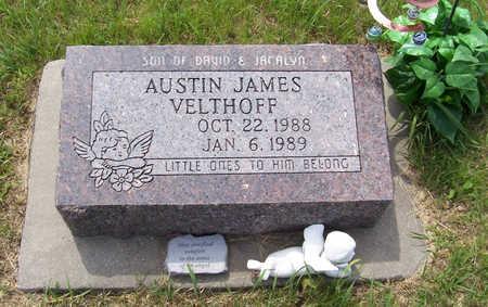 VELTHOFF, AUSTIN JAMES - Shelby County, Iowa | AUSTIN JAMES VELTHOFF