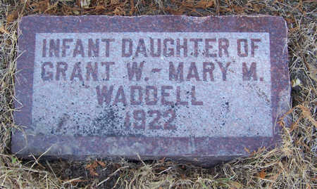 WADDELL, INFANT DAUGHTER - Shelby County, Iowa   INFANT DAUGHTER WADDELL