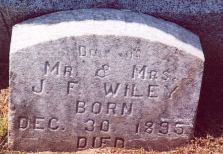 WILEY, ZATHA F. - Shelby County, Iowa | ZATHA F. WILEY
