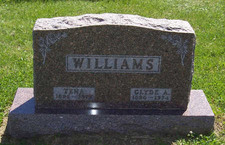WILLIAMS, TENA - Shelby County, Iowa | TENA WILLIAMS