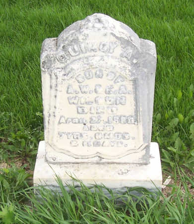 WILSON, QUINCY A. - Shelby County, Iowa | QUINCY A. WILSON