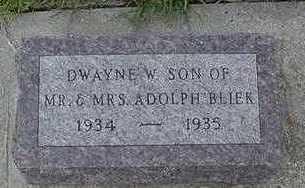 BLIEK, DWAYNE E. - Sioux County, Iowa | DWAYNE E. BLIEK