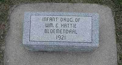 BLOEMENDAAL, INFANT DAU. - Sioux County, Iowa | INFANT DAU. BLOEMENDAAL