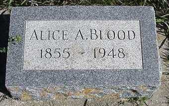 BLOOD, ALICE A. - Sioux County, Iowa | ALICE A. BLOOD