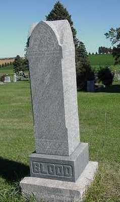 BLOOD, HEADSTONE - Sioux County, Iowa | HEADSTONE BLOOD