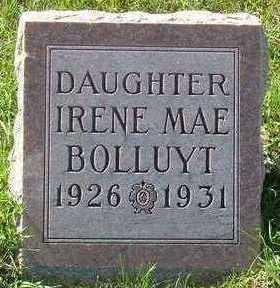 BOLLUYT, IRENE MAE - Sioux County, Iowa | IRENE MAE BOLLUYT
