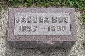 BOS, JACOBA - Sioux County, Iowa | JACOBA BOS
