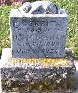 BOSMAN, GERRIT (SON OF H.& M.) - Sioux County, Iowa | GERRIT (SON OF H.& M.) BOSMAN