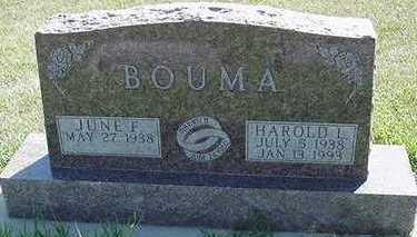 BOUMA, JUNE F. - Sioux County, Iowa | JUNE F. BOUMA