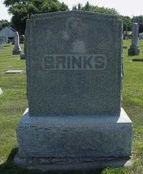 BRINKS, HEADSTONE - Sioux County, Iowa | HEADSTONE BRINKS