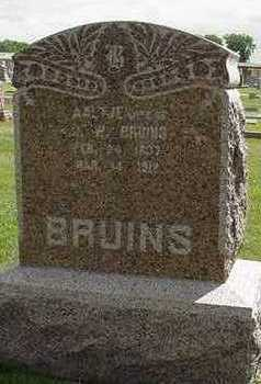 BRUINS, J. W. - Sioux County, Iowa | J. W. BRUINS