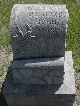 DEJONG, CORNELIUS H. - Sioux County, Iowa | CORNELIUS H. DEJONG