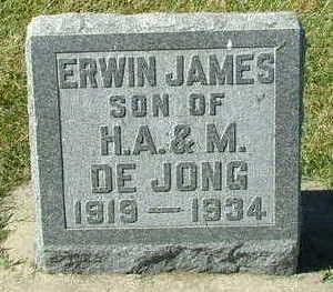 DEJONG, ERWIN JAMES - Sioux County, Iowa   ERWIN JAMES DEJONG