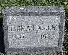 DEJONG, HERMAN - Sioux County, Iowa | HERMAN DEJONG