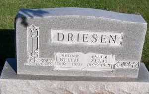 DRIESEN, NELLIE (MRS. KLAAS) - Sioux County, Iowa | NELLIE (MRS. KLAAS) DRIESEN