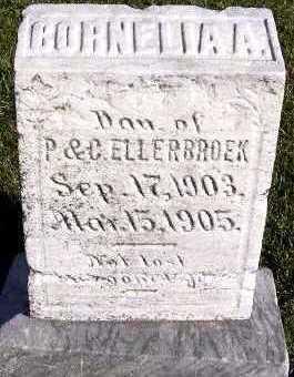 ELLERBROEK, CORNELIA A. (DAU OF P.& C.) - Sioux County, Iowa | CORNELIA A. (DAU OF P.& C.) ELLERBROEK