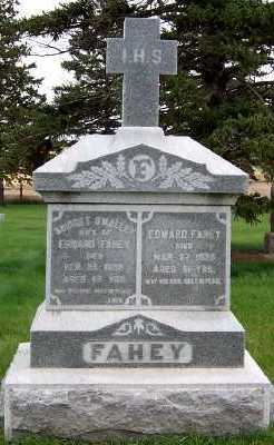 FAHEY, BRIDGET (MRS. EDWARD) - Sioux County, Iowa | BRIDGET (MRS. EDWARD) FAHEY