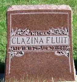 FLUIT, CLAZINA - Sioux County, Iowa | CLAZINA FLUIT