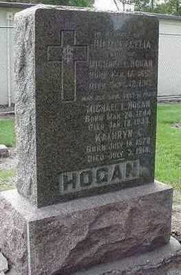 HOGAN, MICHAEL L. - Sioux County, Iowa | MICHAEL L. HOGAN