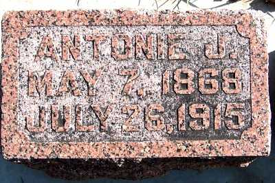 KUYPER, ANTONIE J. - Sioux County, Iowa | ANTONIE J. KUYPER