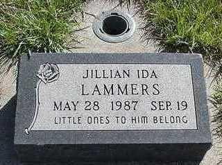 LAMMERS, JILLIAN - Sioux County, Iowa | JILLIAN LAMMERS