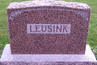 LEUSINK, HEADSTONE - Sioux County, Iowa | HEADSTONE LEUSINK