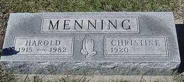 MENNING, CHRISTINE (MRS. HAROLD) - Sioux County, Iowa | CHRISTINE (MRS. HAROLD) MENNING