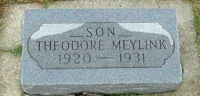 MEYLINK, THEODORE - Sioux County, Iowa | THEODORE MEYLINK