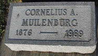 MUILENBURG, CORNELIUS A. - Sioux County, Iowa | CORNELIUS A. MUILENBURG