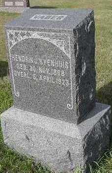 NYENHUIS, HENDRIK J. - Sioux County, Iowa | HENDRIK J. NYENHUIS