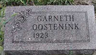 OOSTENINK, GARNETH - Sioux County, Iowa | GARNETH OOSTENINK
