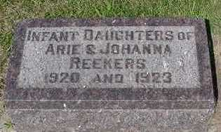 REEKERS, INFANT DAU. - Sioux County, Iowa | INFANT DAU. REEKERS
