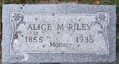RILEY, ALICE M. - Sioux County, Iowa | ALICE M. RILEY