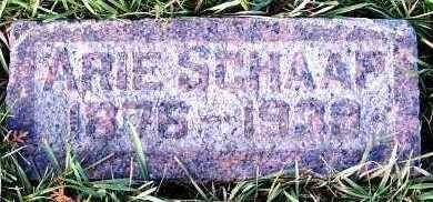 SCHAAP, ARIE (1876-1939) - Sioux County, Iowa | ARIE (1876-1939) SCHAAP