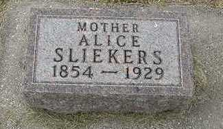 SLIEKERS, ALICE - Sioux County, Iowa | ALICE SLIEKERS