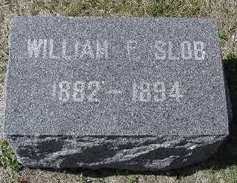 SLOB, WILLIAM  D.1894 - Sioux County, Iowa | WILLIAM  D.1894 SLOB