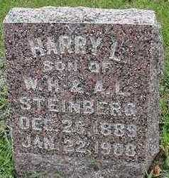 STEINBERG, HARRY L. - Sioux County, Iowa | HARRY L. STEINBERG