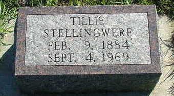 STELLINGWERF, TILLIE - Sioux County, Iowa | TILLIE STELLINGWERF