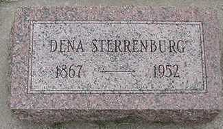 STERRENBURG, DENA  D.1952 - Sioux County, Iowa | DENA  D.1952 STERRENBURG