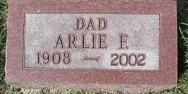 TECHEN, ARLIE F. - Sioux County, Iowa | ARLIE F. TECHEN