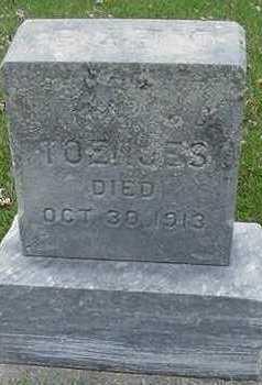 TOENJES, BABY D.1913 - Sioux County, Iowa | BABY D.1913 TOENJES