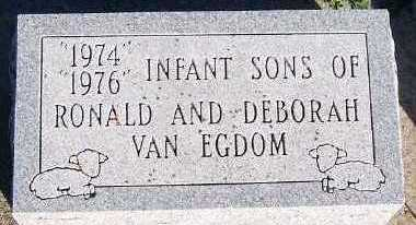 VANEGDOM, INFANT SONS OF RONALD & DEBORAH - Sioux County, Iowa | INFANT SONS OF RONALD & DEBORAH VANEGDOM