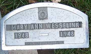 WESSELINK, MARY ANN - Sioux County, Iowa | MARY ANN WESSELINK