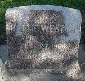 WESTRA, HATTIE  D. 1968 - Sioux County, Iowa | HATTIE  D. 1968 WESTRA