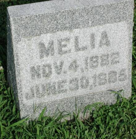 TROUTNER, MELIA - Story County, Iowa | MELIA TROUTNER