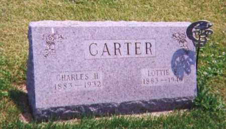 CARTER, LOTTIE - Tama County, Iowa | LOTTIE CARTER