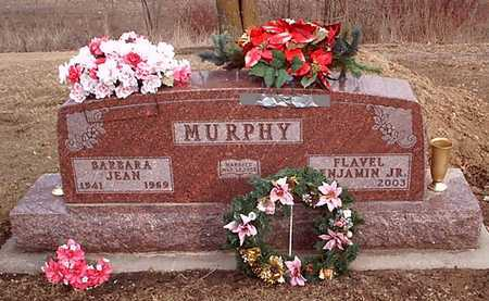 KING MURPHY, BARBARA JEAN - Taylor County, Iowa | BARBARA JEAN KING MURPHY